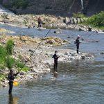 大内山川 鮎の友釣り